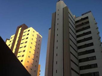 Existem 70 empresas especializadas em Salvador, mas número é insuficiente para demanda - Foto: Iracema Chequer | Agência A TARDE