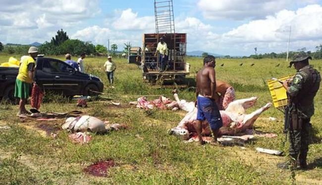 A equipe de fiscalização apreendeu cerca de 900 quilos de gado recém-abatido - Foto: Reprodução   Site Radar 64