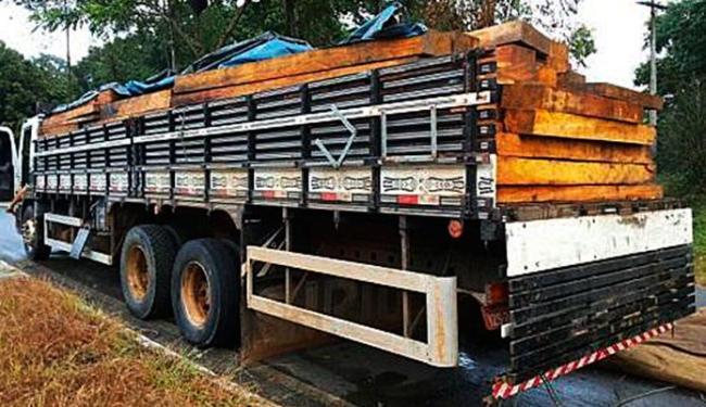 A PRF recebeu ligação denunciando o transporte ilegal - Foto: Divulgação | PRF