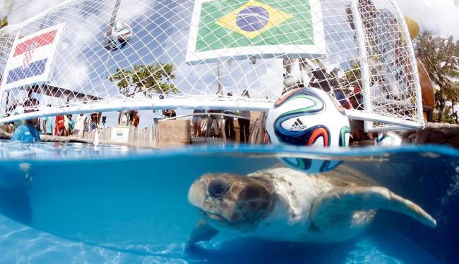 Cabeção pegou a sardinha que dá ao Brasil a vitória no jogo - Foto: Lúcio Távora   Ag. A TARDE
