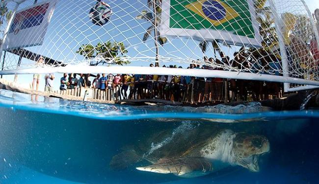 Cabeção pegou a sardinha que dá ao Brasil a vitória no jogo - Foto: Lúcio Távora | Ag. A TARDE