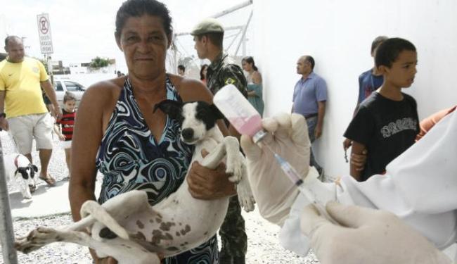 Ong promove imunização gratuita de cães - Foto: | Ag. A TARDE