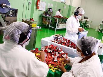 O curso conta com aulas teóricas e práticas em fábricas - Foto: Fernando Vivas | Ag. A TARDE