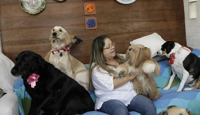 Dona de seis cães, Emily Abubakir busca em Salvador ajuda para a cadelinha doente - Foto: Marco Aurélio Martins | Ag. A TARDE