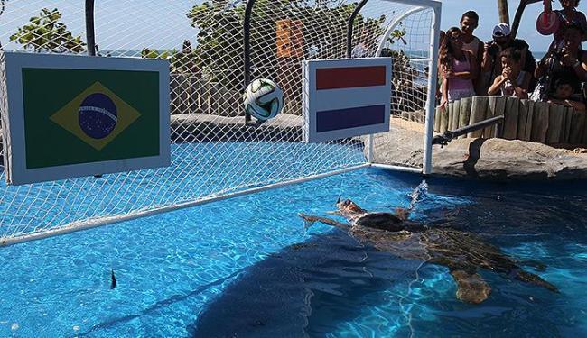 Cabeção definiu primeiro a Holanda como a vencedora da disputa de terceiro lugar... - Foto: Lúcio Távora   Ag. A TARDE