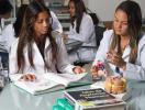 alunas de medicina estudam em sala de faculdade - Foto: