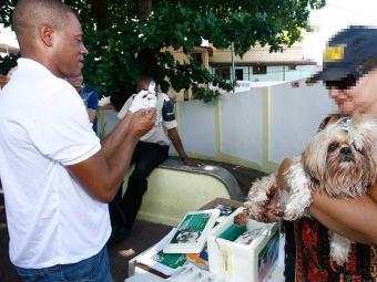 A vacinação antirrábica é para cães e gatos a partir de quatro meses de vida - Foto: Iracema Chequer | Ag. A TARDE
