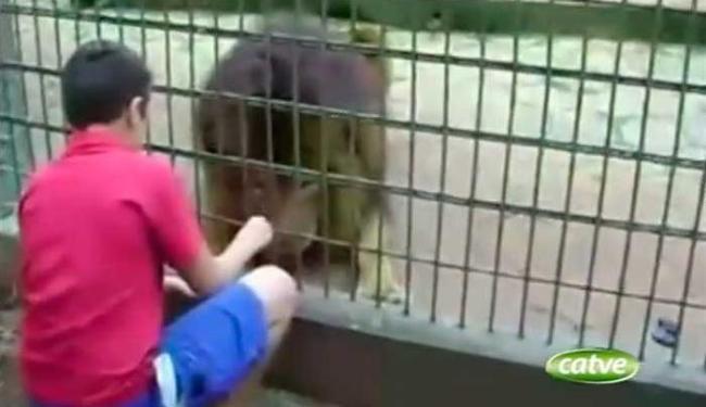 Cena teria sido registrada minutos antes do garoto ser atacado por tigre - Foto: Reprodução   YouTube