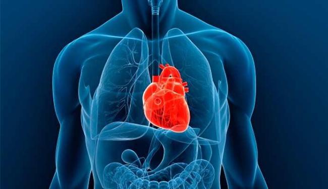 Especialistas esperam que, no futuro, seja comum esse transplante - Foto: Divulgação