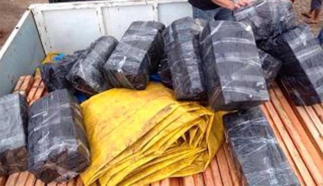 Motorista transportava droga escondida em carga de madeira - Foto: Divulgação | Polícia Federal