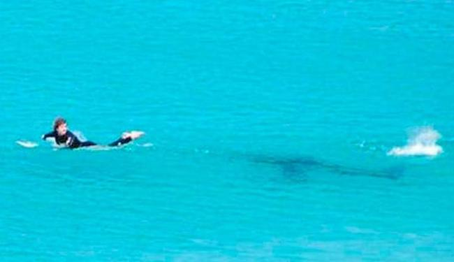 Surfista foge de tubarão no mar da Austrália - Foto: Reprodução/Daily Mail