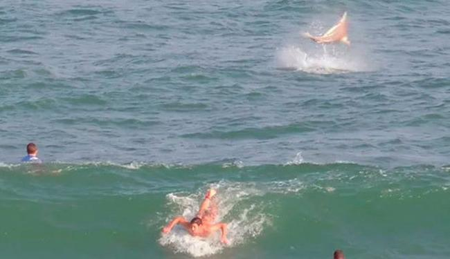 Registro foi feito enquanto algumas pessoas surfavam no local - Foto: Reprodução