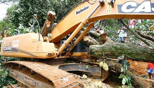 Sidney Lázaro operava uma retroescavadeira quando morreu esmagado pela árvore - Foto: Joá Souza   Ag. A TARDE