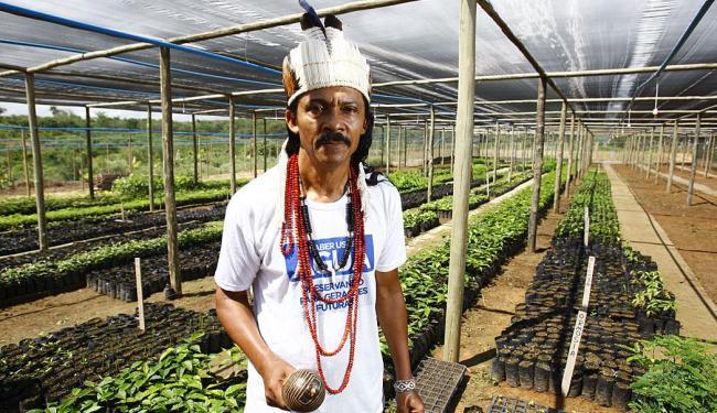 Em Utinga, o índio Otto Payayá coordena um viveiro de plantas criado para reflorestar matas ciliares - Foto: Fernando Vivas | Ag. A TARDE | 11.12.2014