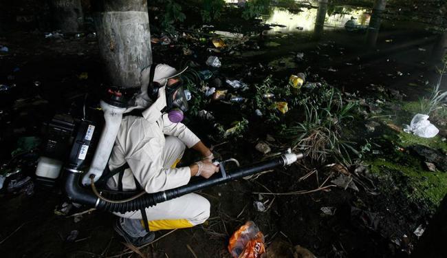Agente do CCZ pulveriza inseticida nos focos dos insetos - Foto: Raul Spinassé | Ag. A TARDE