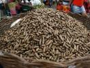 Consumir amendoins na 1ª infância reduz risco de alergia - Foto: Raul Spinassé | Ag. A TARDE