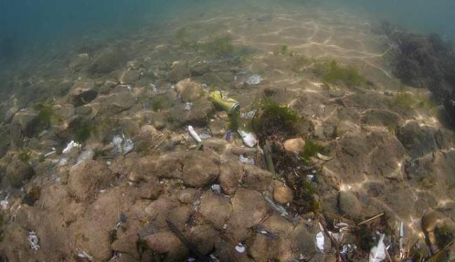 Lixo se acumula no fundo do mar - Foto: Lúcio Távora   Ag. A TARDE