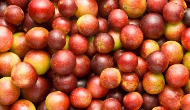 Fruta típica da Amazônia é boa para a saúde - Foto: Divulgação