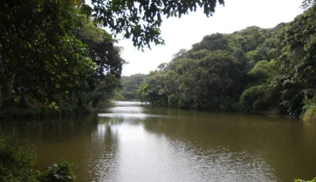 Rio Cascão, no bairro do Cabula, em Salvador - Foto: Lúcio Távora | Ag. A TARDE