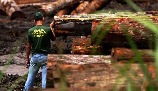 Nos últimos dez anos, o Brasil tem se esforçado para evitar o desmatamento na Amazônia - Foto: Beto Barata | Conteúdo Estadão |