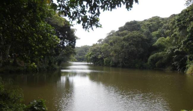 Rio Cascão, no bairro do Cabula - Foto: Lúcio Távora | Ag. A TARDE