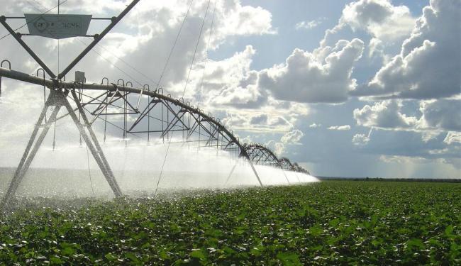 Irrigação é responsável por 72% do consumo de água no país, segundo a ANA - Foto: Divulgação / Aiba