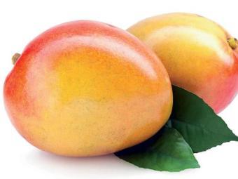A fruta tem preço de jóia - Foto: Divulgação