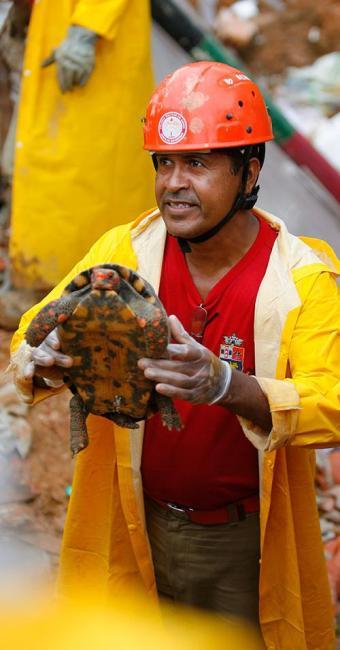 Cágado sobreviveu ao deslizamento de terra no Barro Branco, na avenida San Martin - Foto: Joá Souza | Ag. A TARDE