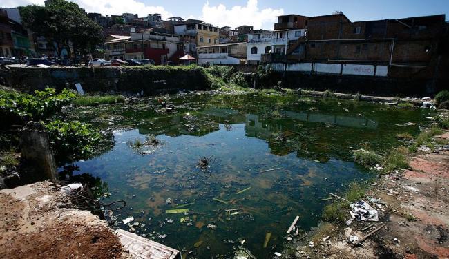 Sujeira e água acumulada causaram proliferação de insetos, segundo moradores - Foto: Raul Spinassé | Ag. A TARDE