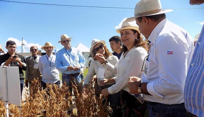 A ministra visitou os estandes e elogiou a organização dos produtores baianos - Foto: Miriam Hermes | Ag. A TARDE | 05.06.2015