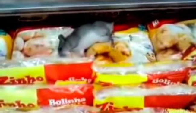 Clientes ficaram impressionados com a cena flagrada em mercado de São Paulo - Foto: Reprodução | Youtube