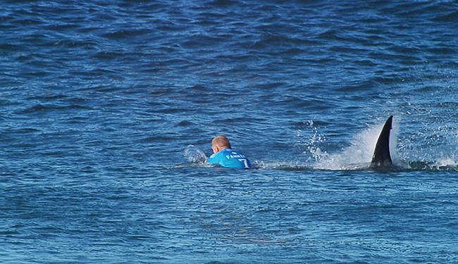 Fanning sai ileso de ataque de tubarão - Foto: Divulgação l WSL