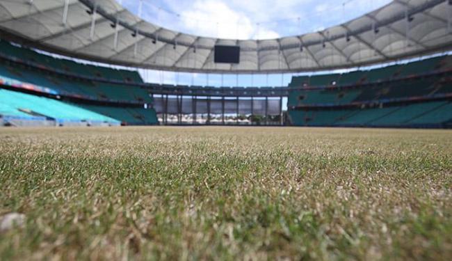 Grama que foi plantada na Arena Fonte Nova é a mesma utilizada no estádio de Pernambuco - Foto: Lúcio Távora | Ag. A TARDE