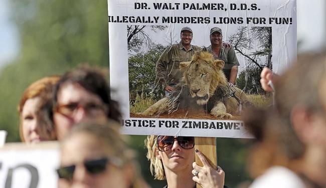 Defensores dos animais foram às ruas em Minnesota pedir justiça pela morte de Cecil - Foto: Eric Miller | Reuters | 29.07.2015