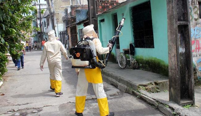 Uso de inseticida nas ruas apenas minimiza os riscos - Foto: Evilânia Sena | Agecom