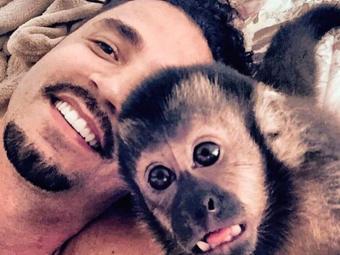 Absurdo é o macaco de Latino andar vestido de Burberry, Gucci, diz Gláucia - Foto: Reprodução | Instagram