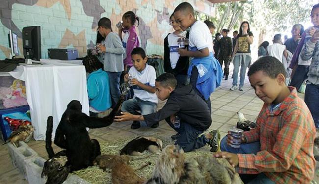 Alunos da Escola Municipal Carlos Murion realizam atividades ambientais na sede da companhia da PM - Foto: Luciano da Matta l Ag. A TARDE
