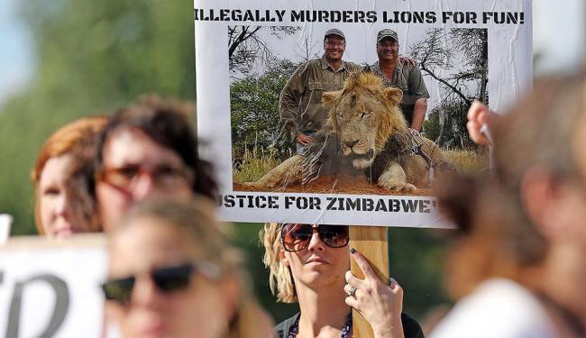 Manifestantes protestam em Bloomington, Minnesota, nos EUA, contra morte de leão no Zimbábue - Foto: Eric Miller | Agência Reuters