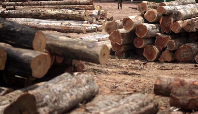 A Bahia tem batido recordes de produtividade - Foto: Ricardo Moraes   Reuters   25.09.2013