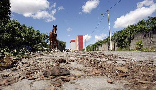 Comunidade exige, dentre outros serviços, investimento na pavimentação de ruas - Foto: Luiz Tito / Ag. A TARDE