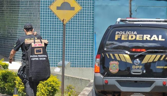 Além dos animais, foram apreendidos dois veículos e documentos falsos - Foto: Marcello Casal Jr. | ABr