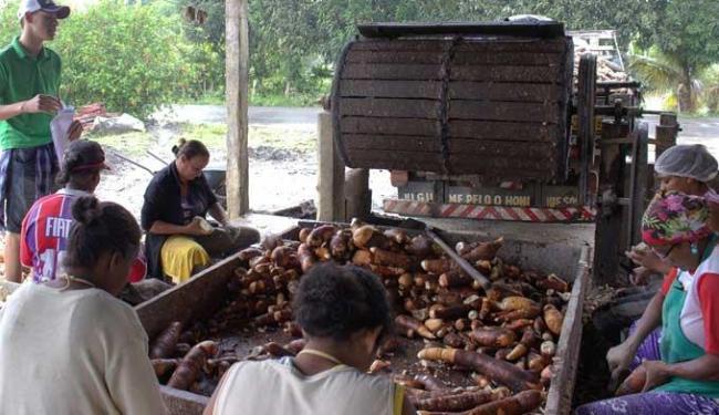 Sistema melhora o aproveitamento da água de mandioca nas casas de farinha - Foto: Gracielle Pereira / Divulgação