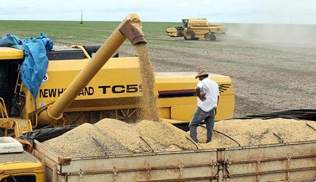Bahia exportou 909 mil toneladas de soja para a China no 1º semestre - Foto: Paulo Whitaker l Ag. Reuters