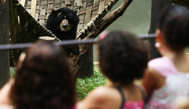 O zoo é uma ótima opção de lazer para as crianças - Foto: Raul Spinassé | Ag. A TARDE