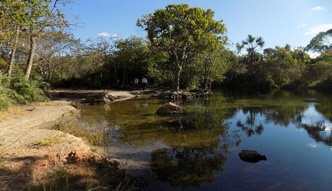 Alimentador dos aquíferos, o bioma do cerrado é considerado o 'pai das águas' - Foto: Miriam Hermes | Ag. A TARDE 19.08.2015