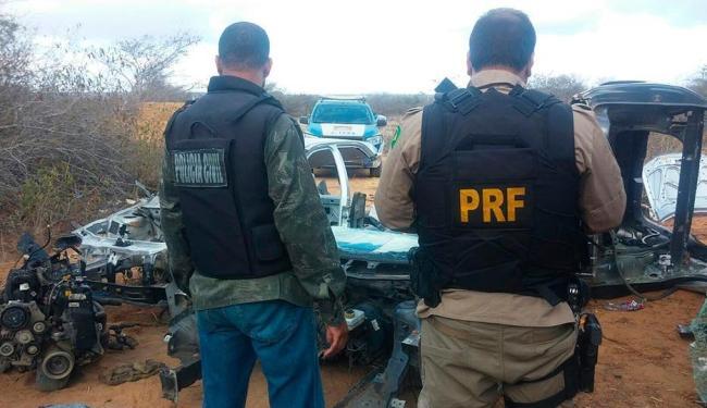 A operação foi realizada de forma conjunta entre a PRF e Polícia Civil - Foto: Divulgação | PRF