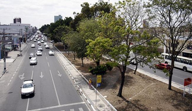 Juíza da 3ª Vara Federal estipulou multa de R$ 5 mil por cada árvore derrubada - Foto: Luiz Tito | Ag. A TARDE