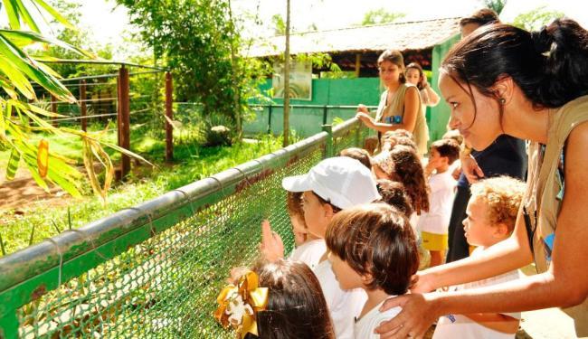 O zoológico orienta aos visitantes a nunca alimentar os animais - Foto: Zoo | Divulgação