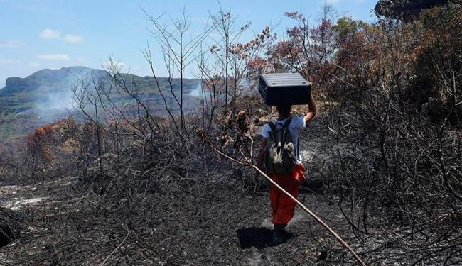 Brigadistas mantém combate ao fogo na Chapada - Foto: Bahia Drone | Reprodução | Facebook