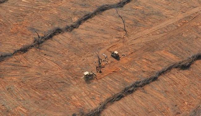 O desmatamento tem a seca como uma das consequência - Foto: Luiz Tito   Ag. A TARDE